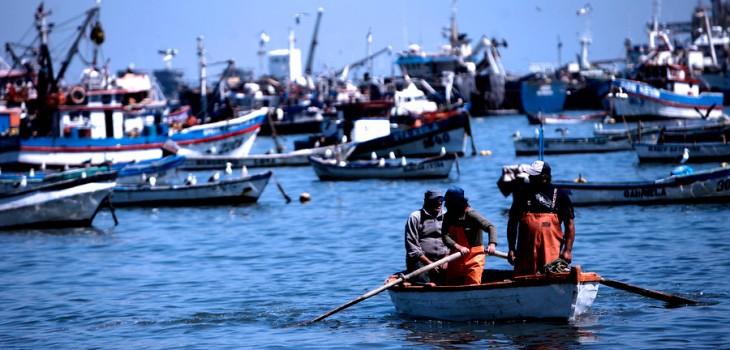 Trabajadores de industria pesquera del Bío Bío logran introducir indicaciones a Ley Corta de Pesca