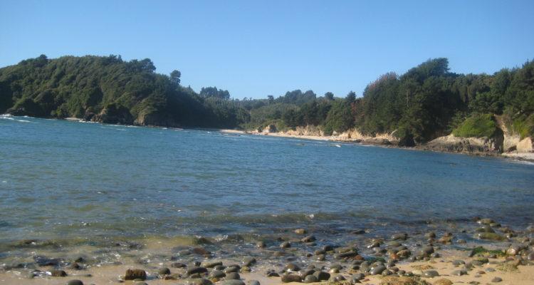 Talcahuano: Piden a Bienes Nacionales asegurar el libre acceso a playas de Península Tumbes